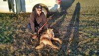 coyote s.jpeg